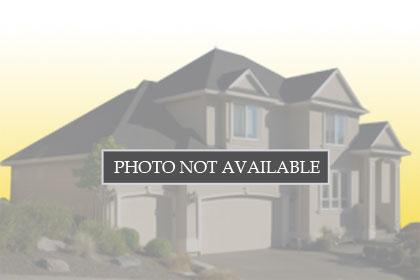 1045 Canyon Creek Terrace, 52183745, FREMONT, Detached,  for sale, Dawn Rivera, REALTY EXPERTS®